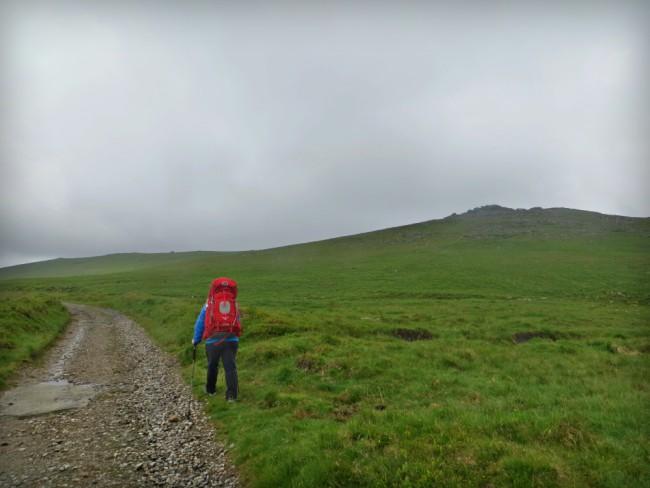 Dartmoor Scarey Tor